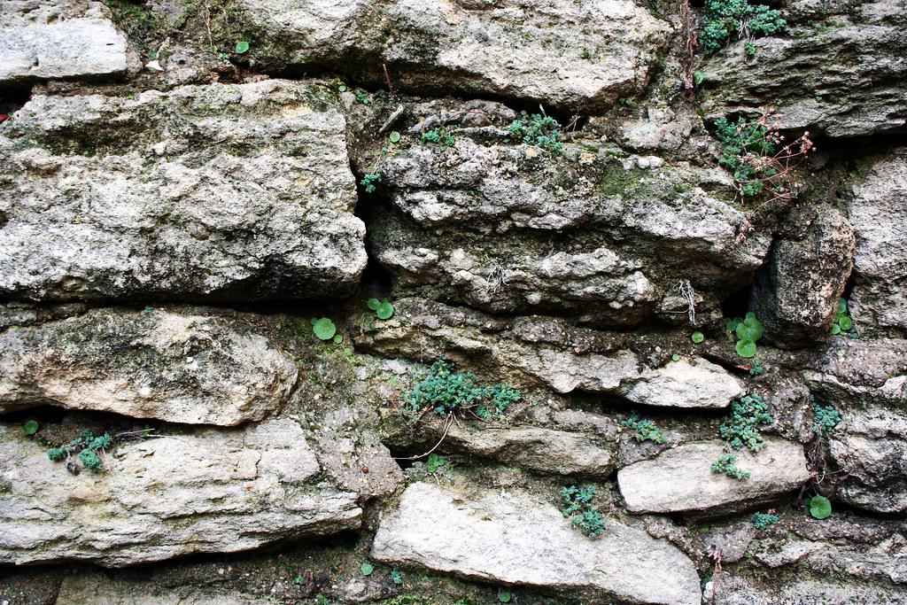 wall-005