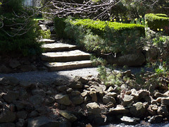 Stone Steps (Glenn Harris (Clintriter)) Tags: green stone oregon hotel stones steps hedge columbiagorge hoodriver
