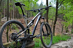 SJ (LordOnOne) Tags: mountain west bike bicycle st forest sussex cycling cycle biking mtb 29er fsr expert specialized stumpjumper leonard's
