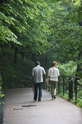 散策 / Let's walk slowly.