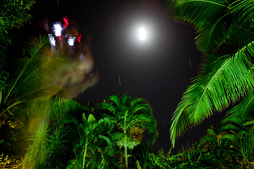 Stars at Night by the Pool in Barbados. by Lunky Barsooth