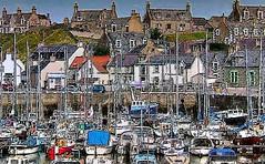 yachts at findochty - moray - scotland (~ paddypix ~) Tags: sea colour boats scotland shoreline picnik morayfirth buoyant ukandireland scenicsnotjustlandscapes ~wevegotthepower~
