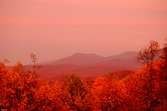 Fall colors in the Great Smokey Mountains (Micha67) Tags: trees red mountains fall leaves landscape evening michael great loveit micha smokey tennesse fabulous picturesque schaefer goldenmix iloveyourart abigfave anawesomeshot platinumheartaward bestoneframeshortnominee