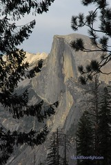 Yosemite - Half Dome though the Forest (Darvin Atkeson) Tags: california park desktop wallpaper portrait usa mountain color nature rock pine america point outdoors climb us photographer screensaver outdoor nevada scenic parks trails conservation sierra glacier trail pines national yosemite granite elevation preserve mountians mountian watcher naturephotography darvin 4miletrail wallpapersize  outdoorphotography  perservation atkeson californiaphotography outdoorphotographer  darv californiaphotographer   liquidmoonlightcom monunains liquidmoonlight darvinatkeson