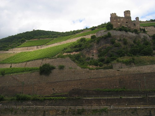 Ehrenfels and Proto-Wine