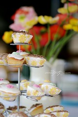 afternoon tea... (luisa brimble) Tags: cupcakes poppies pinkcupcakes alwaysveryposhindeed