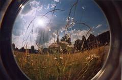 (M Verheyen) Tags: flowers houses camp sun film butterfly germany lomo fishy flors titisee fisheye2 papallona selvanegra alemanya scwarzwald typish naturefreunde