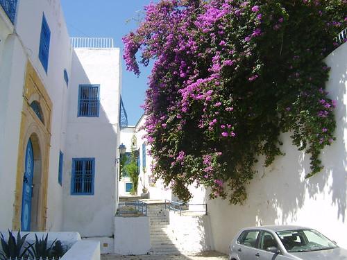 Túnez 198 por ti.