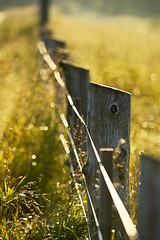 i can see all obstacles in my way. (kvdl) Tags: morning sunlight ontario sunshine rural fence dof bokeh august stjacobs icanseeclearlynow threebridgesroad kvdl sowesto