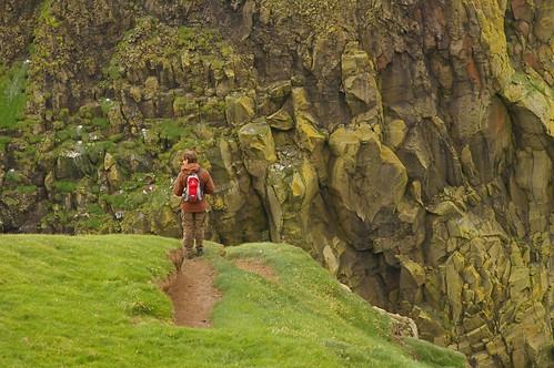 Faroe Islands - bird cliffs