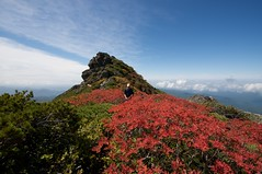 当麻岳山頂