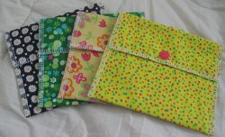 Little Reusable Baggies