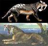 thylacosmilus up arriba & smilodon down abajo