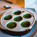 Escargot in Garlic Herb Butter