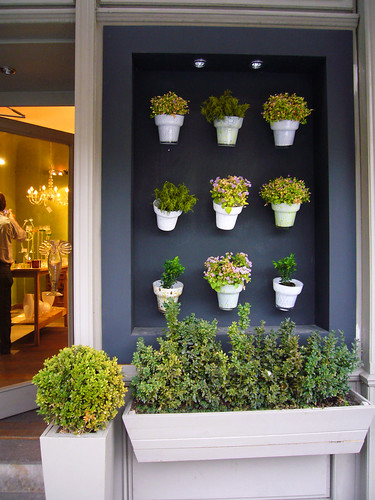 Prague_PrettyPlantDisplay
