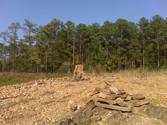 The campsite at Little River Marina (Clevergrrl) Tags: georgia mud stuck augusta quicksand clarkshill thurmondlake