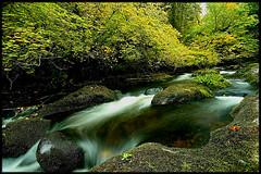 EAGLE CREEK / NORTH FORK (Cliff Zener) Tags: mt hood creeks zener oregoncreeksandrivers columbiagorgecreeksandrivers riverscliff