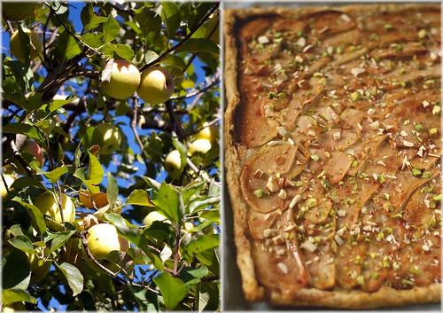 apple galette3