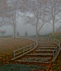 """Stairway into the Fog"" (my4otos) Tags: park autumn trees fall nature leaves fog wow interestingness longisland stairway nina mothernature eisenhowerpark mywinners wowiekazowie onlythebestare overtheexcellence excapture thatsbostin unlimitedphotos"