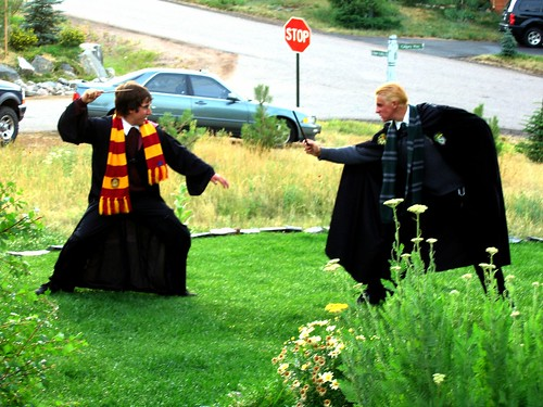Harry v Draco in Genessee