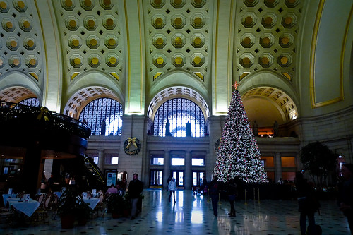 Union Station Tree