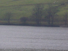 BAC Jet Provost T.3a XN598; Crash location: Gouthwaite Reservoir