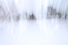 kinematic (-Antoine-) Tags: park trees winter white snow canada motion blur tree nature forest movement blurry quebec jan quote snowy hiver north sigma arbres motionblur qubec invierno nordic neige 1020mm 2008 1020 foret arbre parc blanc saguenay gauthier fort nord flou mouvement chicoutimi boreal citation taiga boug wintery nordique sigma1020mm boreale borale boral bouge kinematic sigma1020 taga rosaire hivernal rosairegauthier borealie saguenaylacstjean cinmatique saguenaylacsaintjean sverak qubec borealia nordicite nordicity rosairegaut0011 svrk antoinerouleau