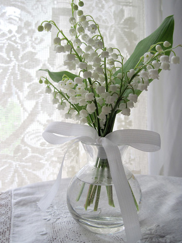 Lily-of-the-Valley 2