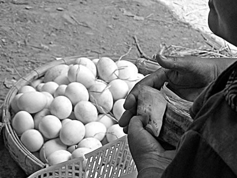 Selling eggs near Psar Toul Tom Poung, Phnom Penh, Cambodia