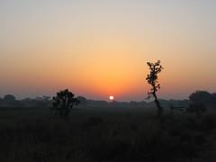 Sunrise (serega:)) Tags: road trip morning sun india sunrise early transport jaipur