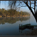 Murray river winter morning