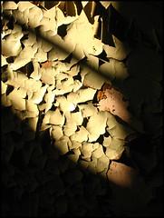 peeling paint (sulamith.sallmann) Tags: light shadow texture abandoned deutschland licht peeling factory decay fabrik struktur structure textures peelingpaint farbe schatten challenger hiddenplace verlassen xyz textur betrieb lostplace lehnitz sulamithsallmann abgeplatzt trashbit goldstaraward beginnerdigitalphotographychallengewinner klinkerwerk