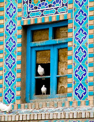 Two white pigeons (MastaBaba) Tags: travel blue white afghanistan pigeon pigeons mosque kabul mazar 20050320 mazaresharif singintheblues