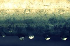 we had a little rain... (Lulybelle) Tags: green texture gold pole raindrops soe blackblue shieldofexcellence theperfectphotographer abcopen:project=wateris