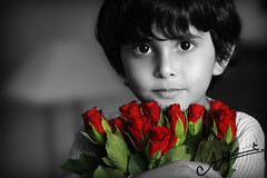 (A.A.A) Tags: family red roses portrait baby white black love face look rose canon photography kid all child sad mark iii nephew photograph rights iloveyou reserved fahad aaa amna imsorry irresistible eos1ds apologize althani canoneos1dsmarkiii hawaalrayyanfav photographybyamnaaalthani