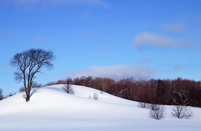 [Xbeats] Beautiful Winter by pakshahsin