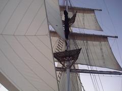 sails (zgreatscot) Tags: sailing ye june2008 mackaytownsville