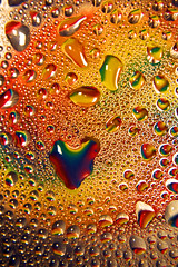 Dew Loves You (Michelle in Ireland) Tags: blue red fab orange color colour green wet water colors yellow beads drops colours purple heart bright vibrant dew lucky heartshaped waterbeads collected blueribbonwinner challengeyouwinner abigfave aplusphoto theunforgettablepictures colourartaward rainbowish 1on1colorfulphotooftheweek acg1stplacewinner msh0509 dewheart dewfish 1on1colorfulphotooftheweeknovember2008 msh050920
