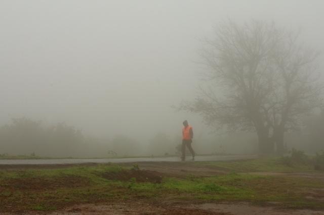 foggy stroll....