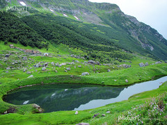 Shounter Lake (iM Khan { AWAY }) Tags: pakistan lake reflection green beauty landscape valley land kashmir azad neelum shounter canonpowershots3is pakistaniphotographer imkhan islamabadiphotographer vosplusbellesphotos shountervalley