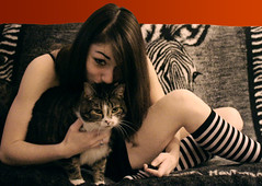 127 ~ Goth is Love (Photography by Brea) Tags: love cat kiss stripes goth gothicculture