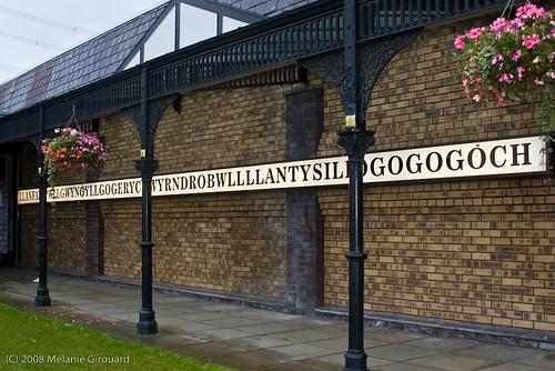 Llanfairpwllgwyngyllgogerychwyrndrobwllllantysiliogogogoch, Wales.