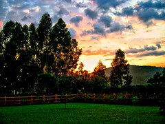 Nascer do sol na Fazenda do Lobo - Sunrise in the Wolf\'s Farm - Brazil