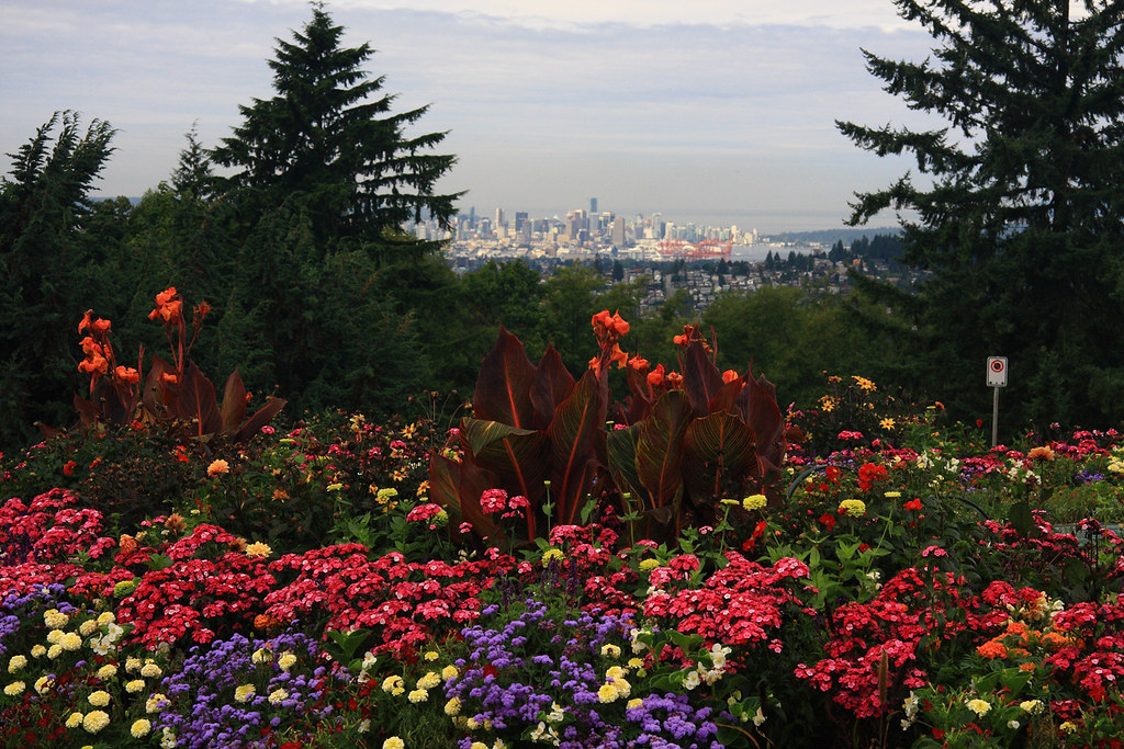 This is Vancouver,the City Embraced  by flowers Anywhere