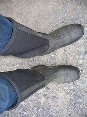 Barn Muck Boots
