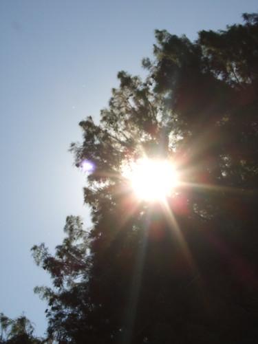 October Sunshine