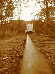Mainline (The Ghostcop) Tags: county old railroad plants mountain west tree history fall colors beautiful forest train virginia town antique scenic engine logging rail tourist steam foliage wv rails locomotive cass pocahontas excursion geared bygone