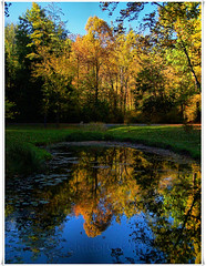 Golden Autumn Afternoon (Child of the King Photography) Tags: bravo reflexions soe gbr naturesfinest firstquality specnature colorphotoaward visiongroup theunforgettablepictures flickrslegend tup2 obq 100commentgroup vision100 guasdivinas lesamisdupetitprince