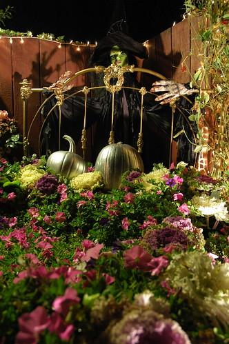 Halloween Witch, Mill Rose Inn, Half Moon Bay, California by Wonderlane