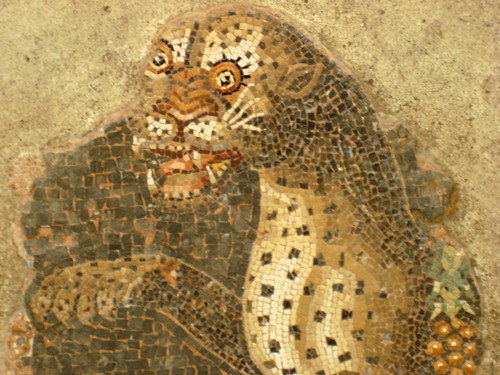 Mosaic of a Panther with a Bunch of Grapes, Delos Archaeological Museum